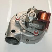 R10022718 (Custom)