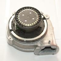 R10022853 (Custom)